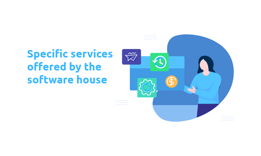 Specific services offered by the software house